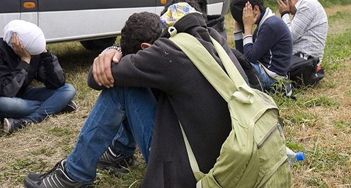SRĐAN PUHALO: Zamislite kako bismo se tek odnosili prema migrantima da nismo vjernici!