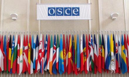 OSCE izradio poseban izvještaj o postupanju prema novinarima tokom javnih protesta