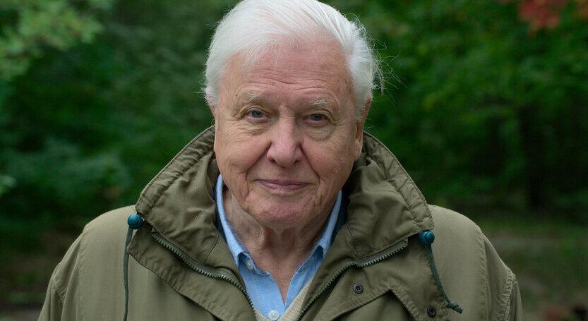 Neuništivi David Attenborough